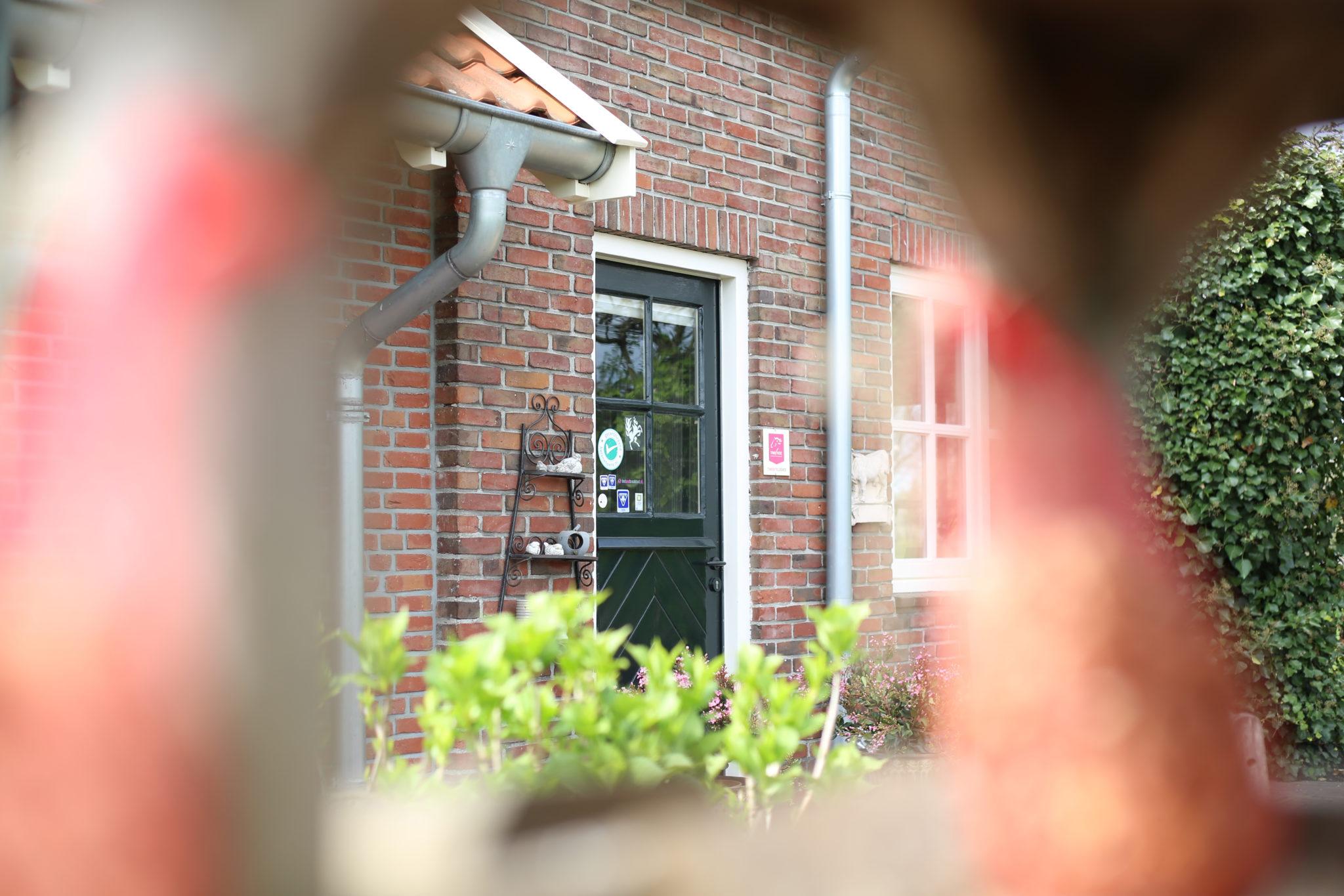 Sfeerfotografie - Suus' FotoSjop - Oldenzaal - Sfeer - Foto - Bedrijf - Enschede - Portret - Life style - Buiten - Licht - Fris - Natuur - Enschede - Hengelo
