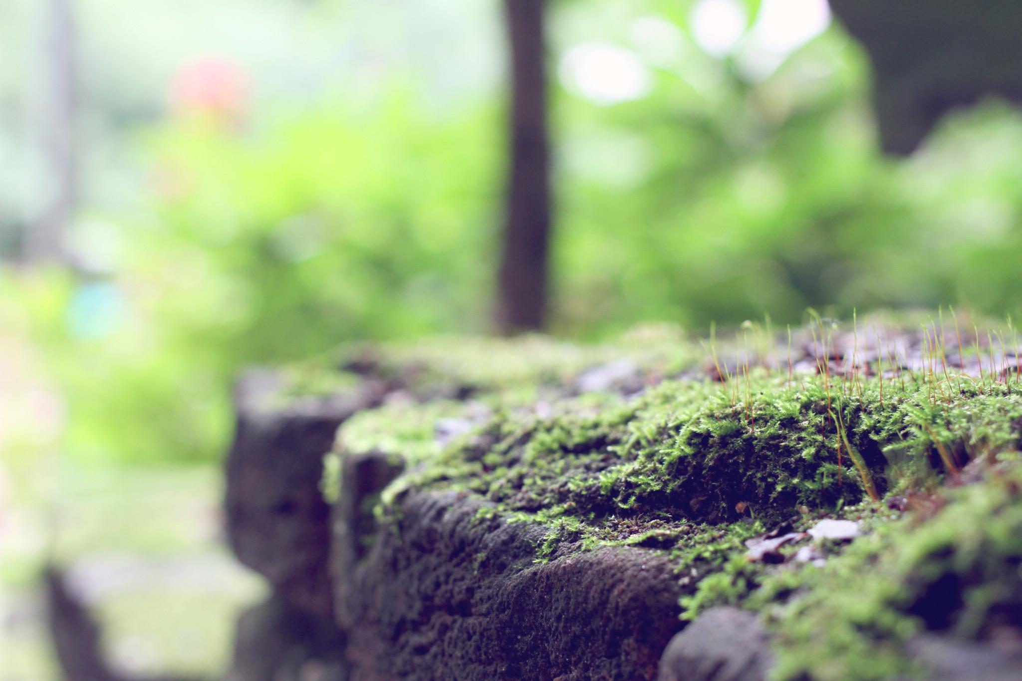 Sfeerfoto's-sfeerfotografie-suus-fotosjop